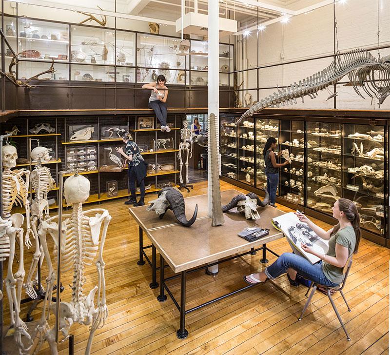 Nature Lab At Risd